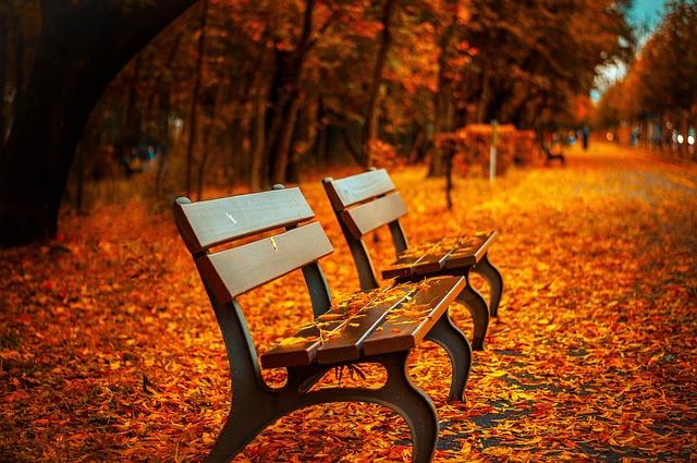 bench_560435_640_0.jpg