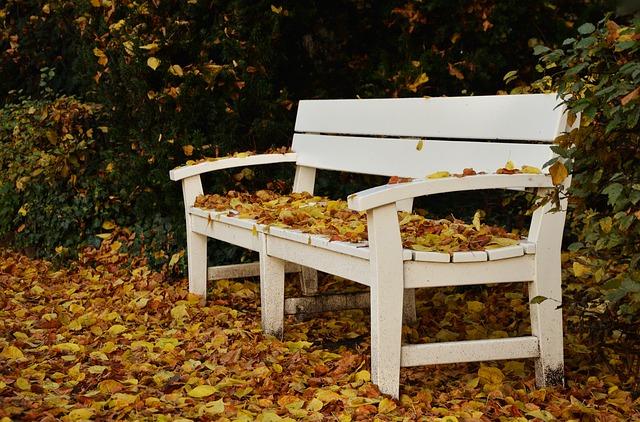 park_bench_1794181_640_0.jpg